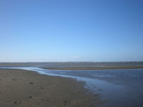 Nudgee Beach (8)