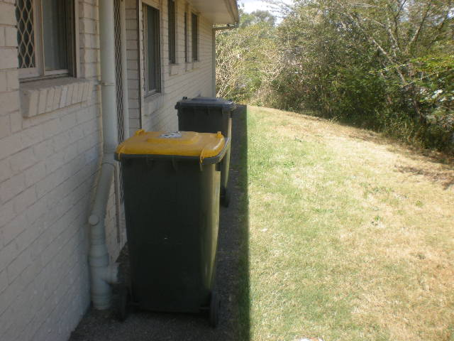 Our Bins