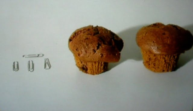 Some paperclips and two chocolate chip muffins