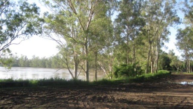 Brisbane River the day after