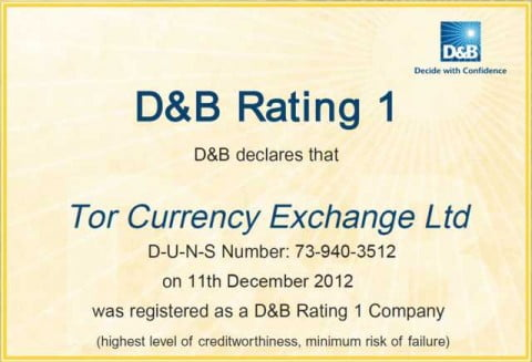 D & B Rating