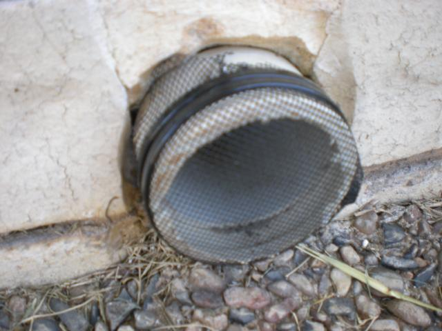 covered pipe