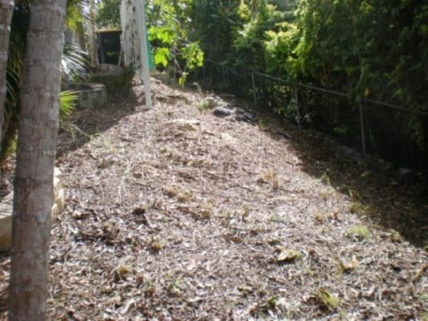 Gardening - All Clear