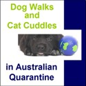 Dog Walks in Australian quarantine