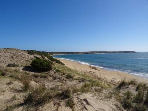 Phillip Island (2)