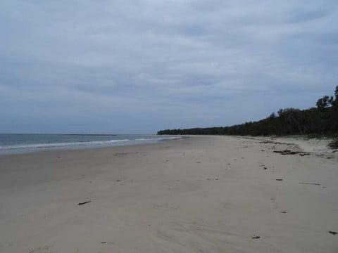 Yamba beach (4)