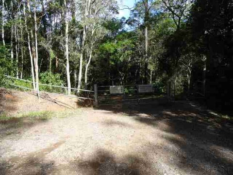 bushwalking (10)