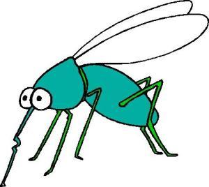 Mosquito 3