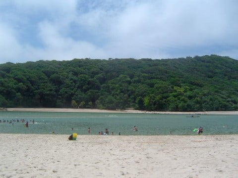 Tallebudgera_Creek
