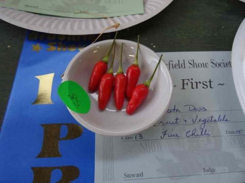 Five chilli winner