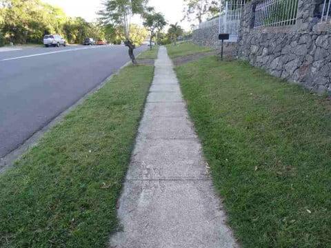 my grass