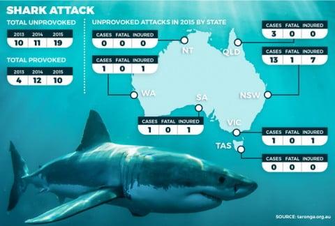 sharkstats