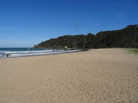Charlesworth Bay