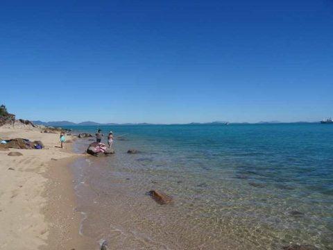 dingo beach (2)