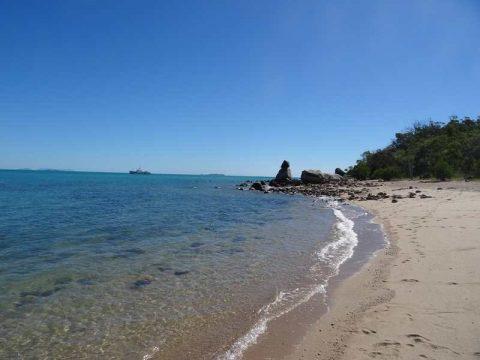 dingo beach (3)