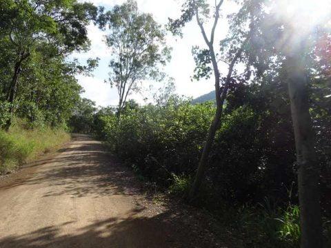 road-to-cedar-creek-falls