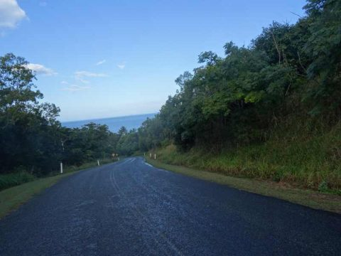 road-to-conway-beach