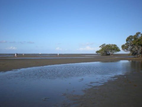 Nudgee Beach (1)