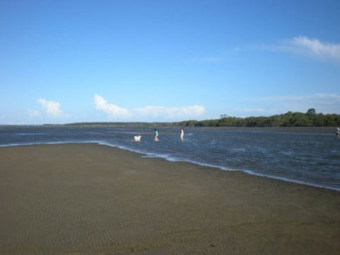 Nudgee Beach (10)