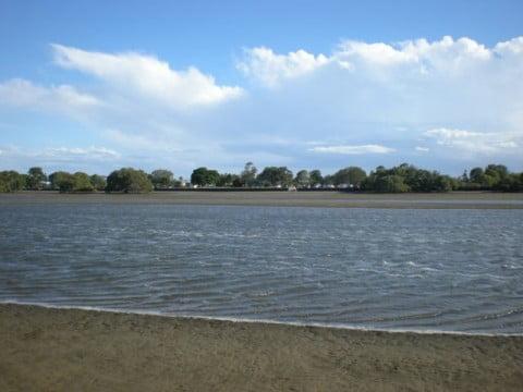 Nudgee Beach (11)