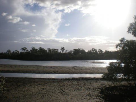 Nudgee Beach (17)
