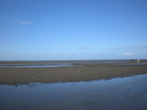 Nudgee Beach (2)