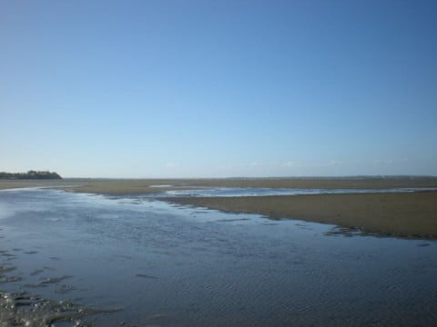 Nudgee Beach (3)