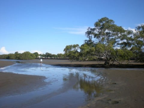 Nudgee Beach (4)