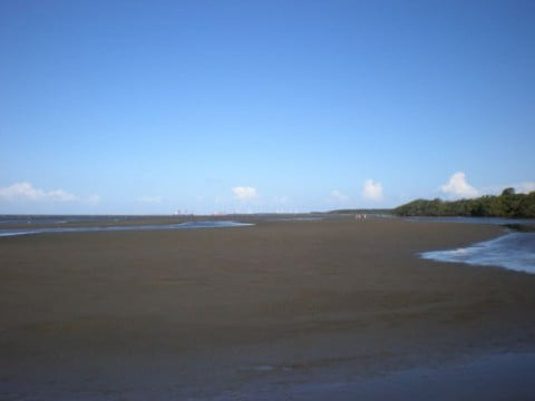Nudgee Beach (6)