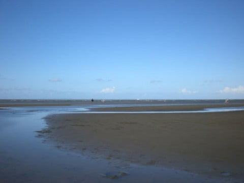 Nudgee Beach (7)