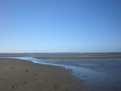 Nudgee Beach (8)