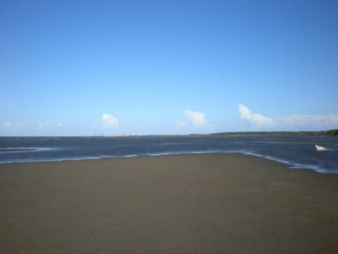 Nudgee Beach (9)