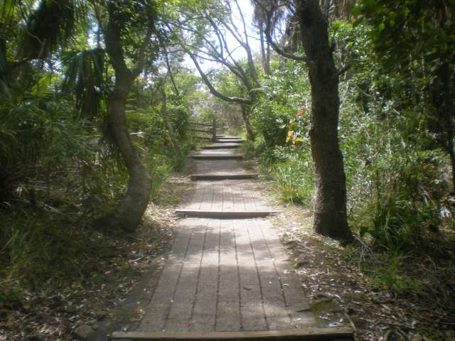 Byron Bay Path