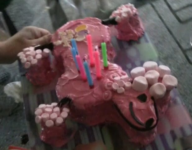 Pink Poodle Birthday Cake