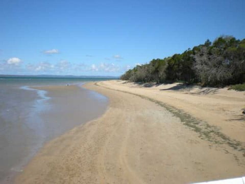 Hervey Bay with Fraser