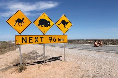 Nullarbor warning signs