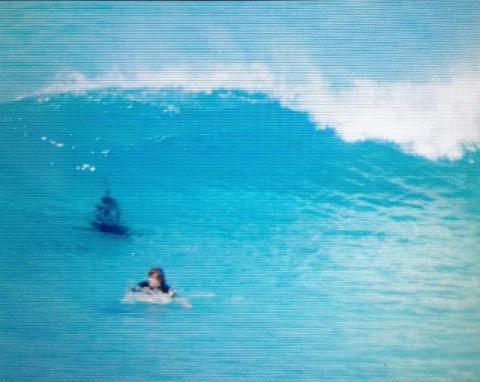 shark stalking 3