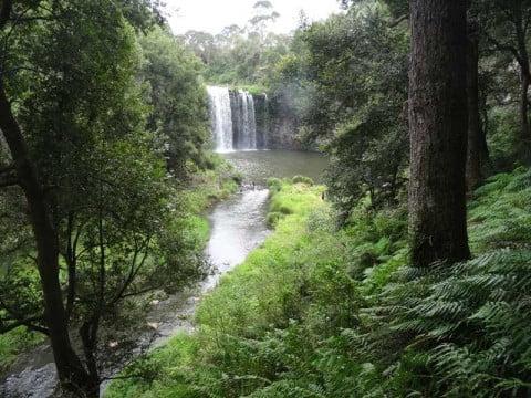 Dangar Falls 4