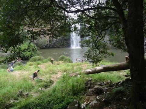 Dangar Falls 6