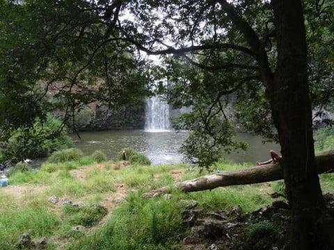 Dangar Falls 8