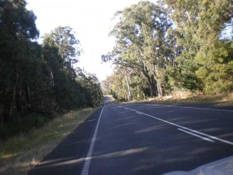 Melbourne north 3