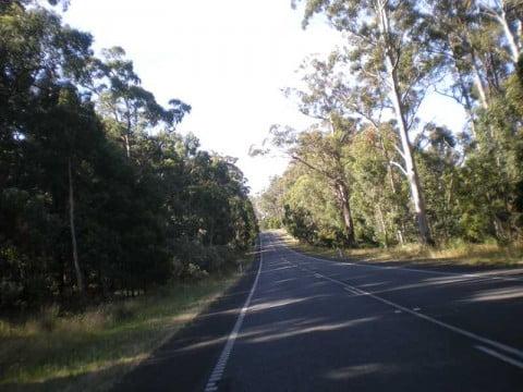 Melbourne north 4