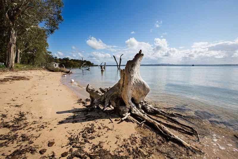 Macleay island australia