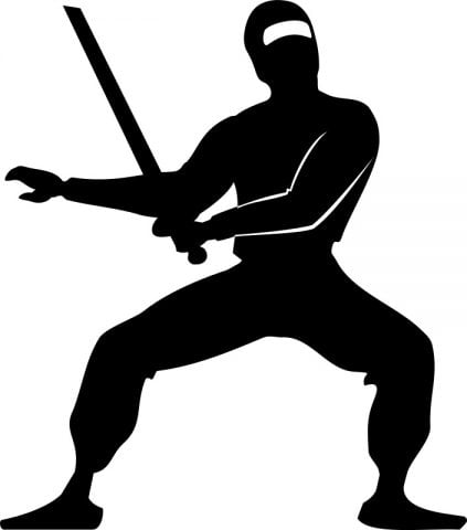 ninja-break
