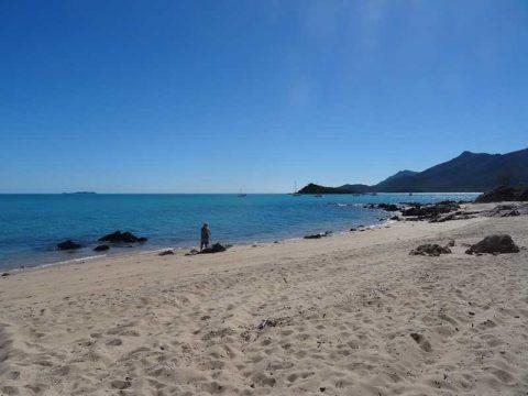 dingo beach (1)