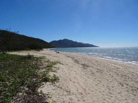 dingo beach (4)